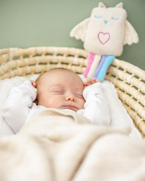 Lulla Eule - die Einschlafhilfe