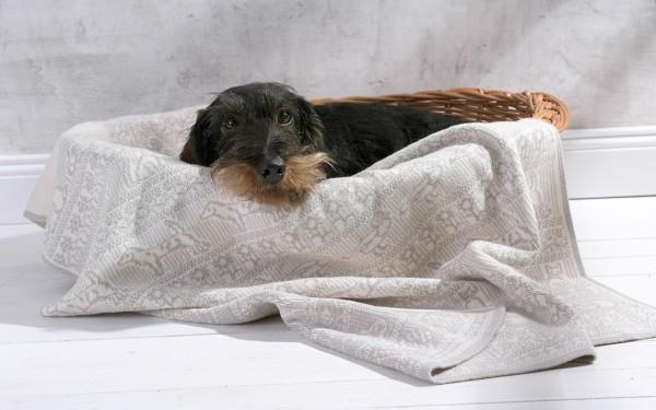 Hundedecke aus Baumwolle mit Namen
